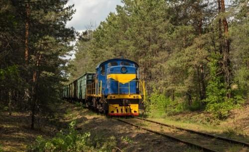ТГМ4А-952. Украина, Ровенская область, подъездной путь от станции Рафаловка. Автор: Владик. Дата: 27 мая 2019 г.