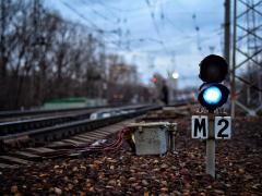 Карликовый светофор